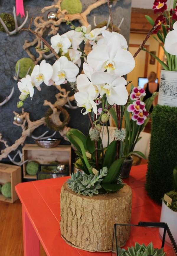 The Fleuriste Mother's Day 4 - The OP Life
