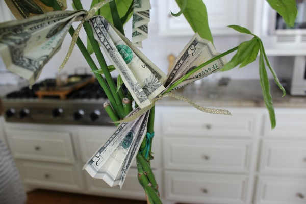 The Money Tree 4 The OP Life