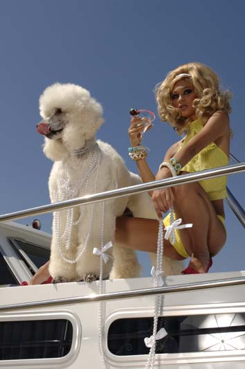 Blonde martini with fancy poodle on yaght