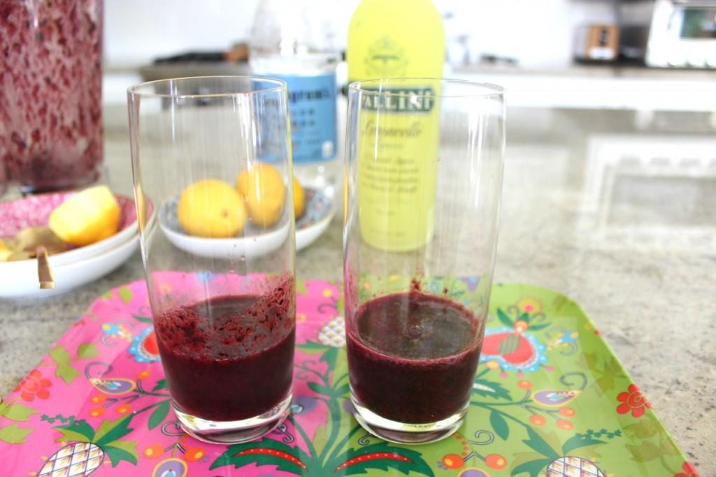 Fuzzy Friday Blueberry Limoncello 8