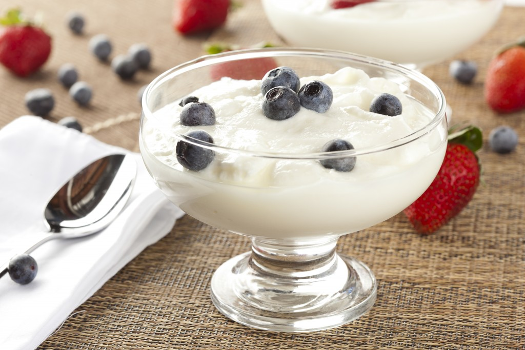 Fresh Organic Greek Yogurt with blueberries