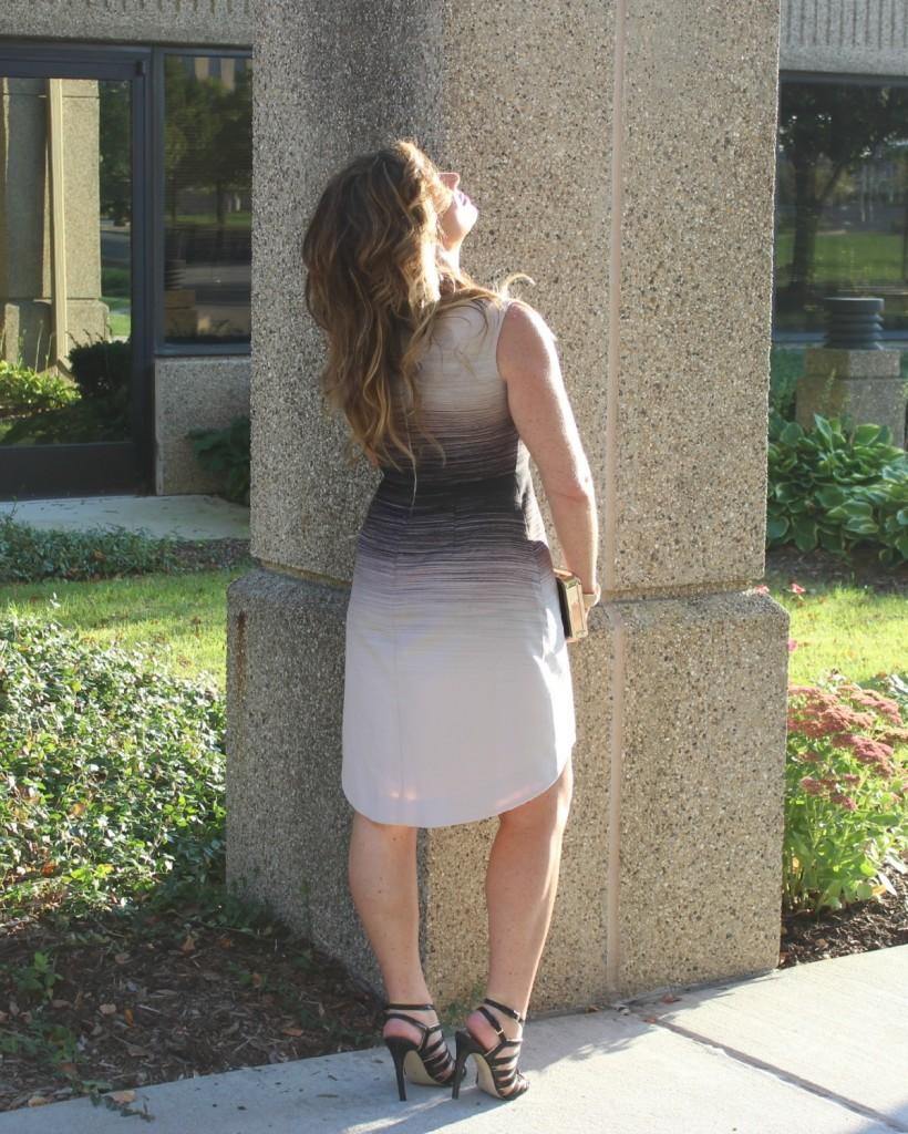 Halston Heritage Ombre Dress 2