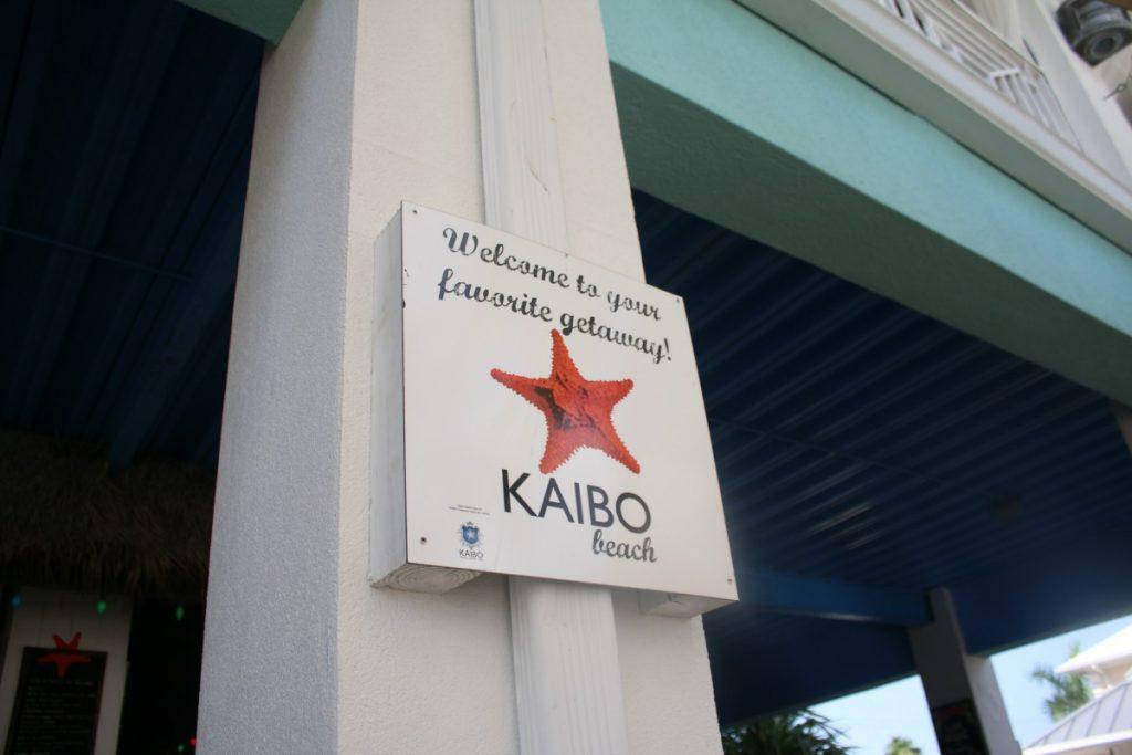 #FuzzyFriday Mudslide Kaibo TheOPLife.com 2