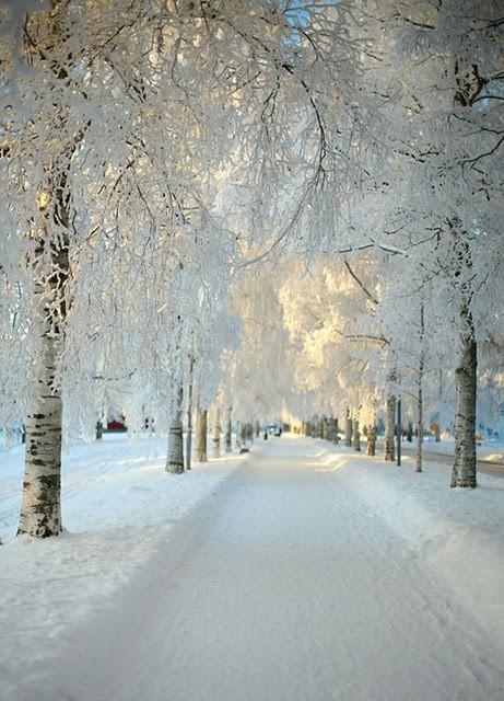 Winterwonderland peace