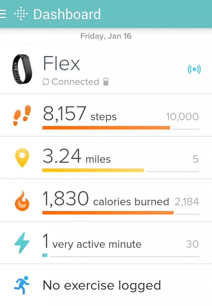 Fitbit Screenshot The OP Life